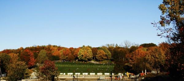 L'automne est venu! 10