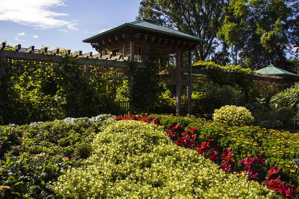jardin botanique montréal29