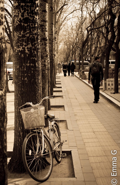 Beijing Bike