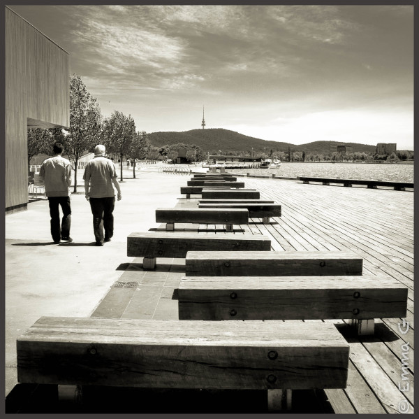Beside Lake Burley Griffin