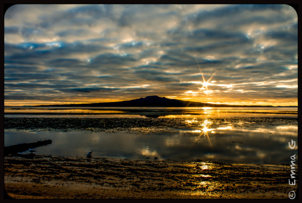 Rangitoto Sunrise