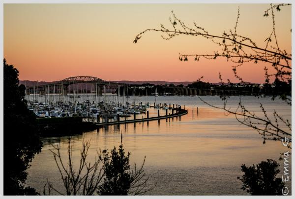 Sunrise at Bayswater Marina, Auckland