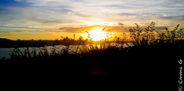 Auckland City Sunset