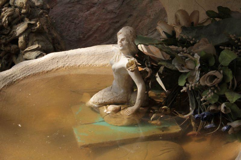 The Maremaid