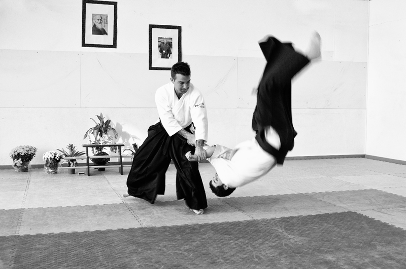 Aikido  -  The Way of Harmony