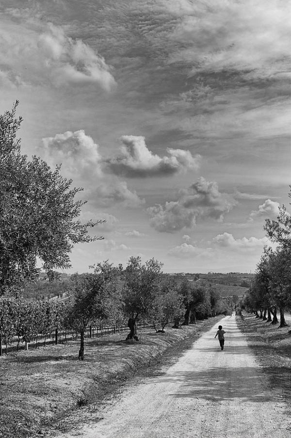 correr caminho campo criança