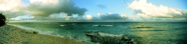 panorama of the beach at Lady Elliot Island