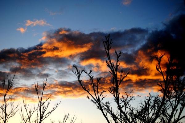 Y hasta las nubes arden.