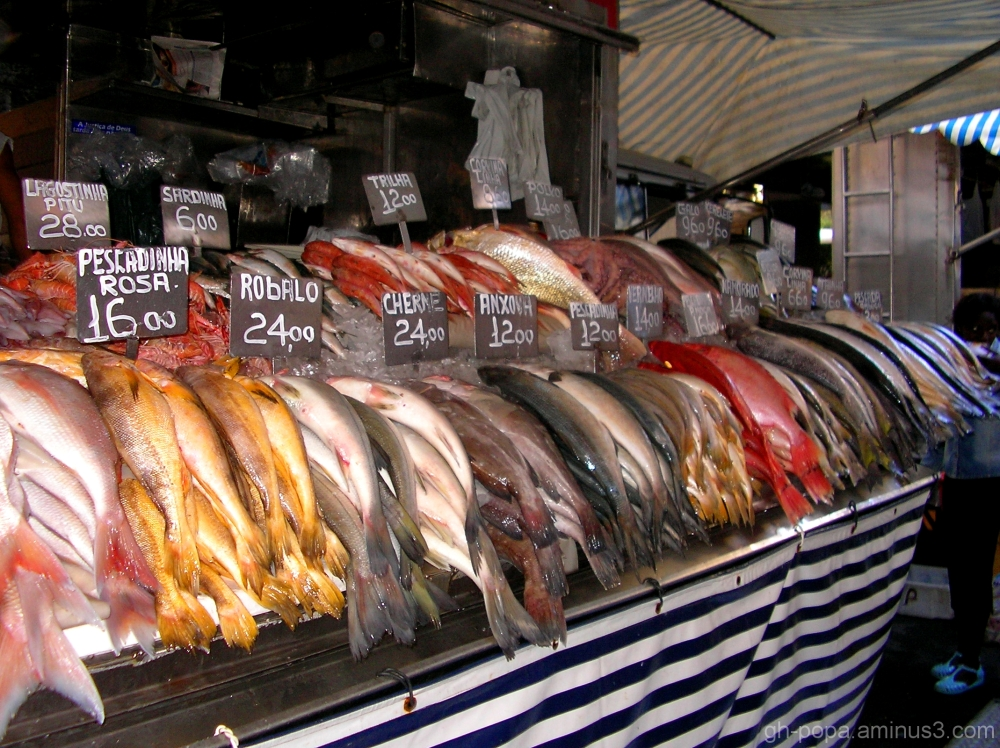 Market Fish Rio_de_Janeiro