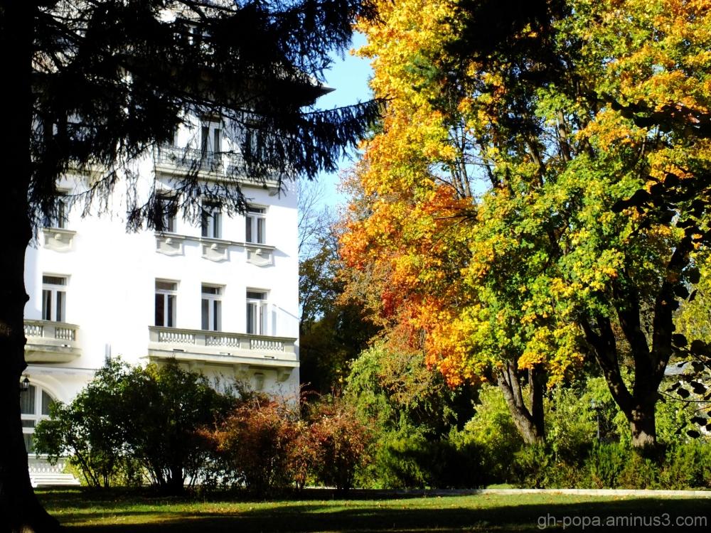 Autumn (4)