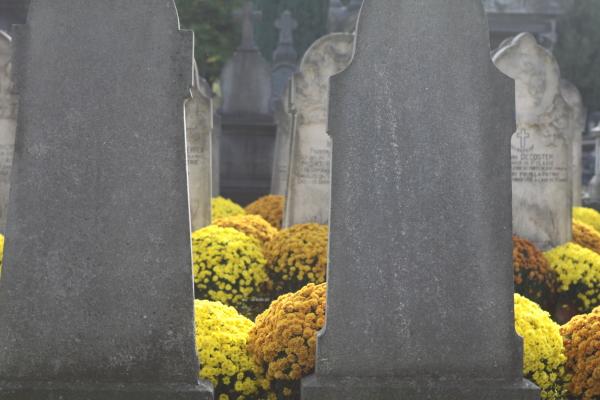 J'irai fleurir vos tombes
