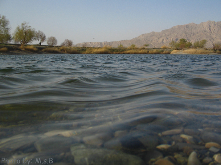 در انتظار آنم که از آب هم زلال تر است ...