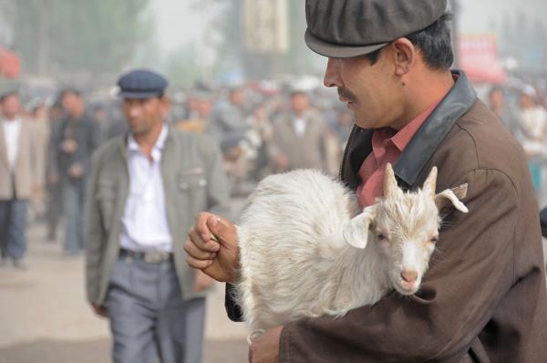 The Lamb's Keeper