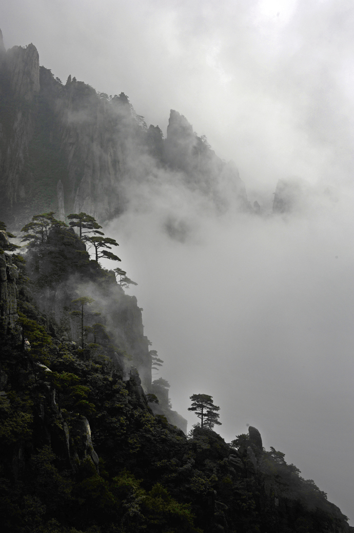 Huangshan mountain pines clouds