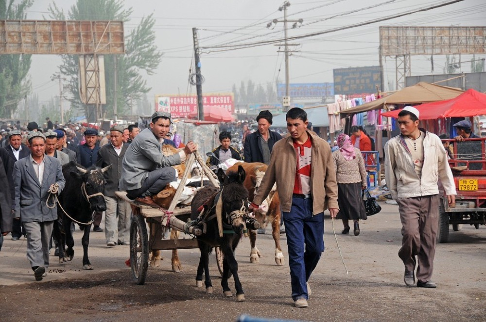 Kashgar street donkey-cart