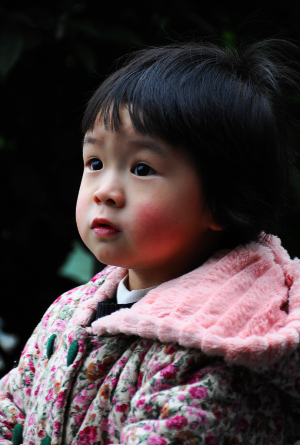 A Girl in Guilin