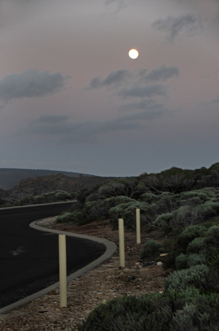 Moonlit Country Road