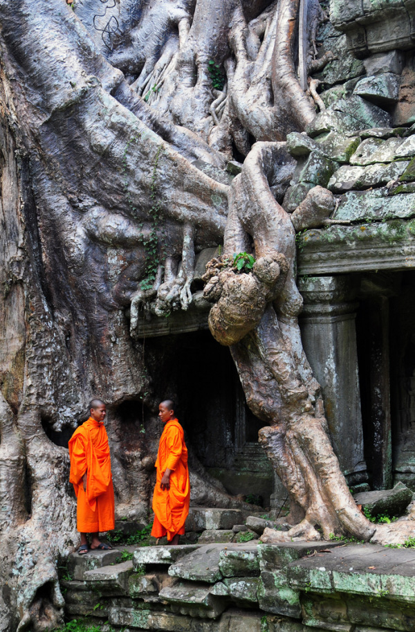 Monks at Preah Khan Temple (Cambodia)