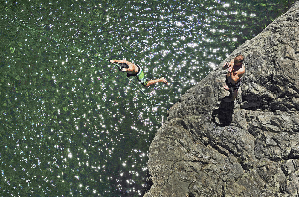 Leaping into Pelorus River