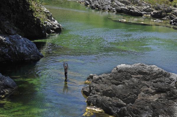 In the Pelorus River