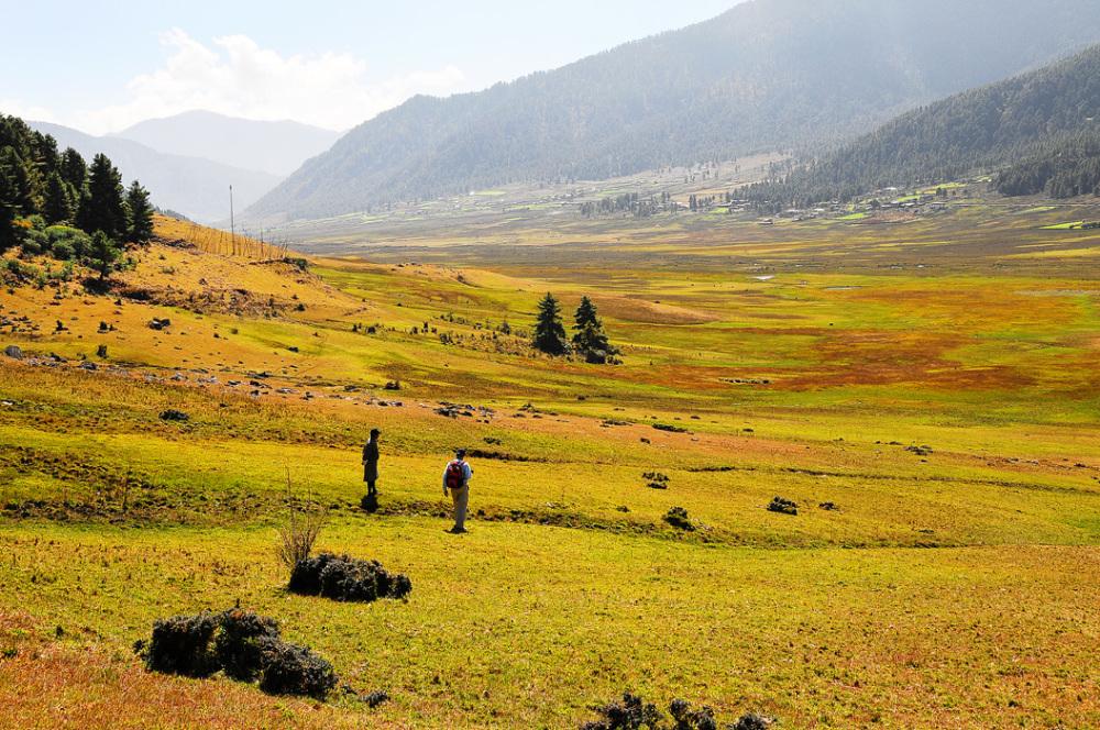 Valley of the Black-Necked Cranes, Bhutan