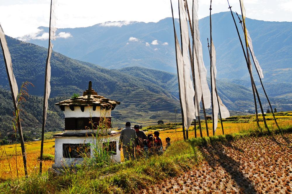 Choten in the Rice Field (Bhutan)