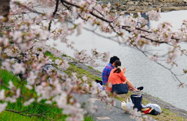 Springtime Lovers