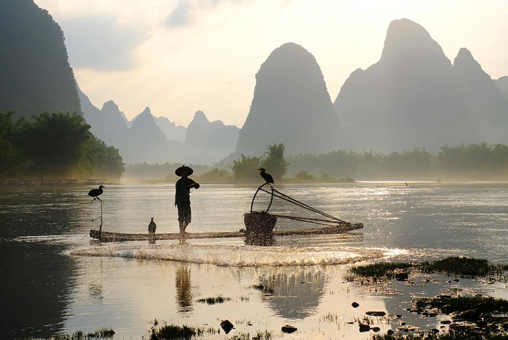 Fisherman Casting the Net