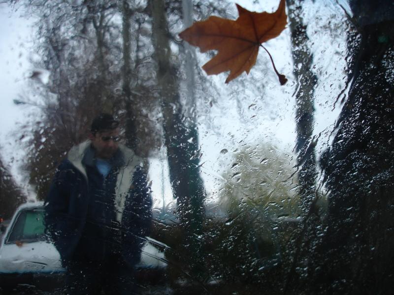 Autumn Snow On The Wet Street