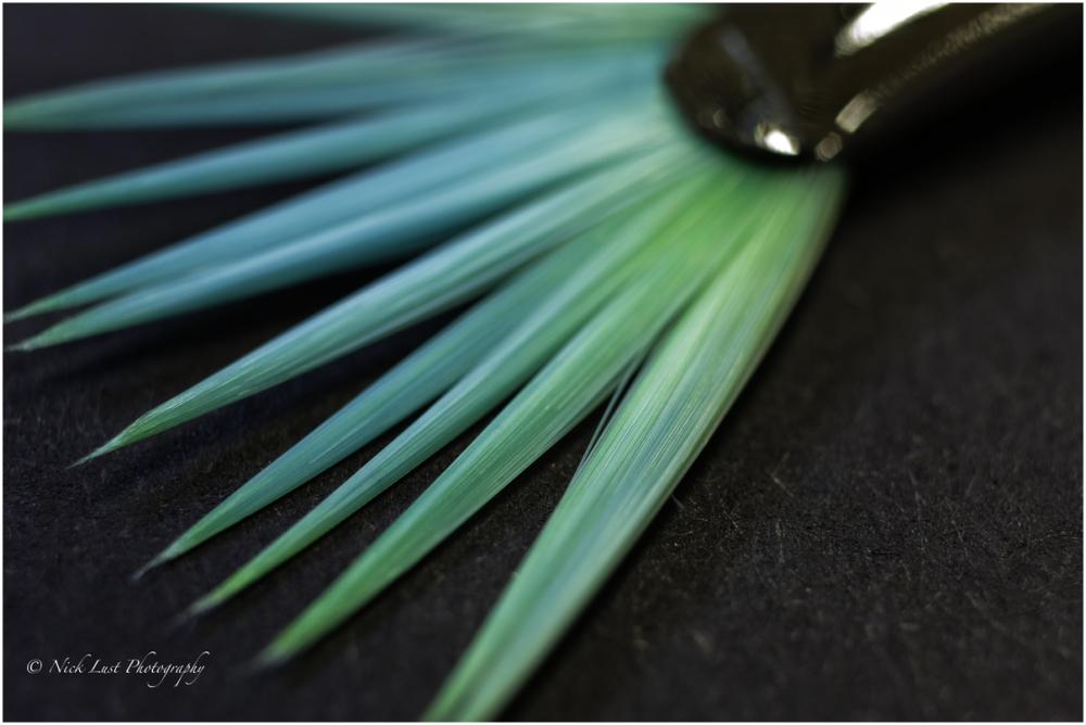 macro paint brush bristles