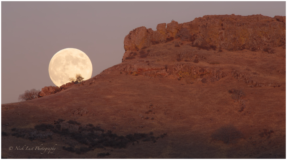 Harvest moon rise, san benito county, rural