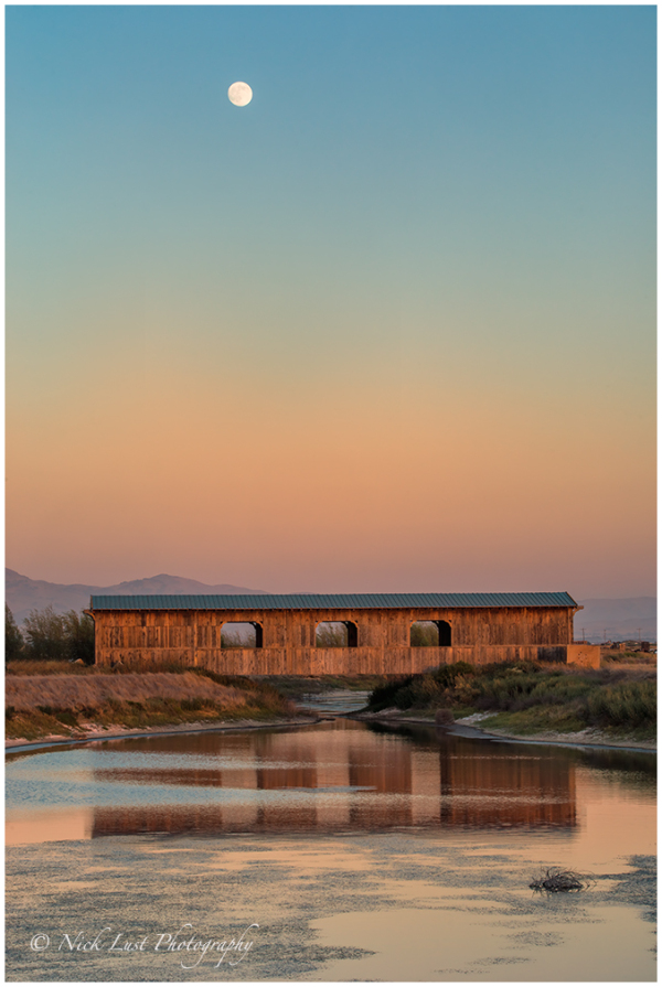 covered bridge; san benito county; california; moo