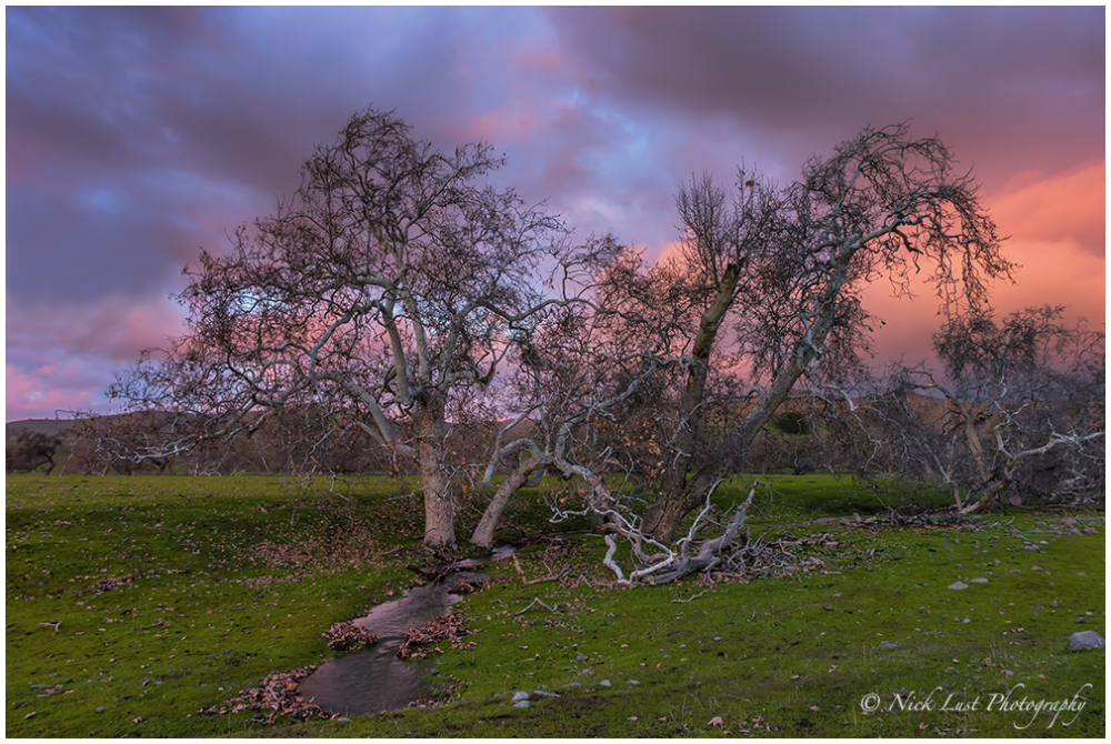 el nino, california, sunset, san benito
