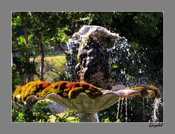 fontaine de mons var