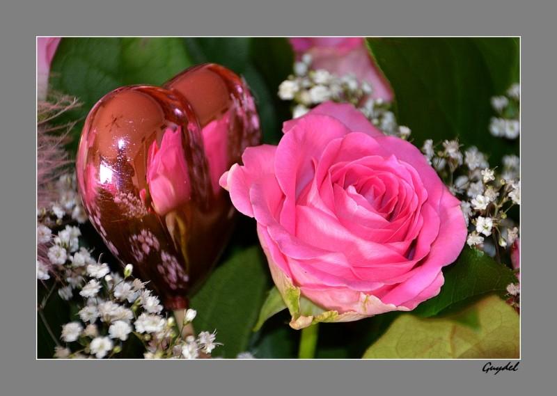 roses st-valentin