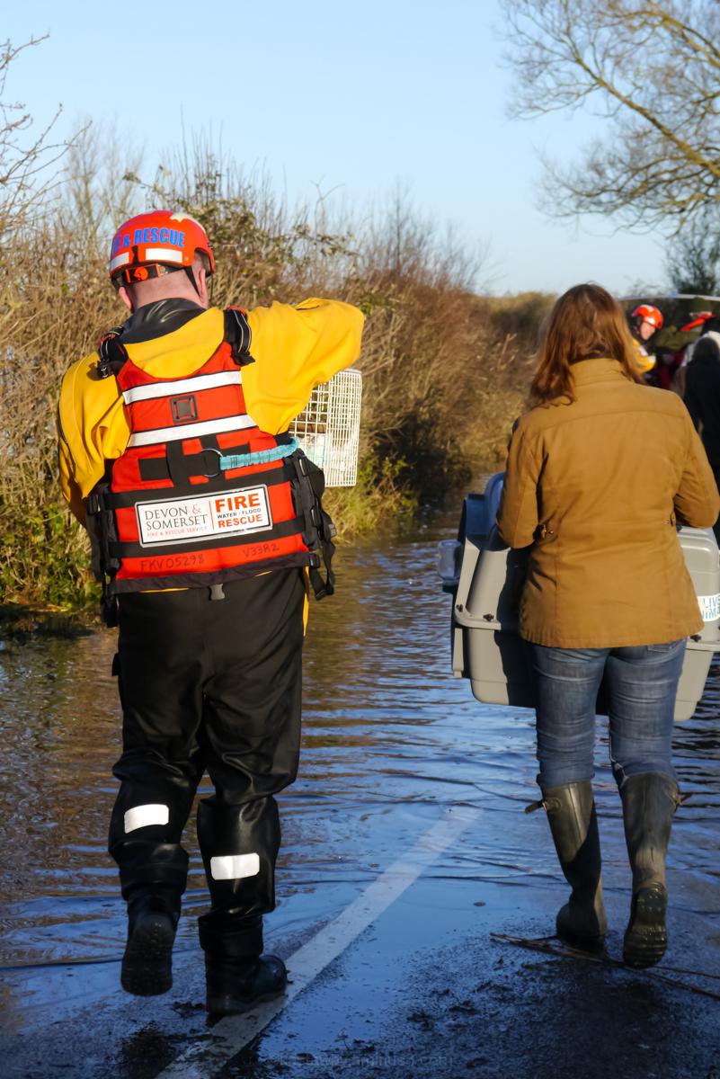 Muchelney floods rescue 2014 devon & somerset fire