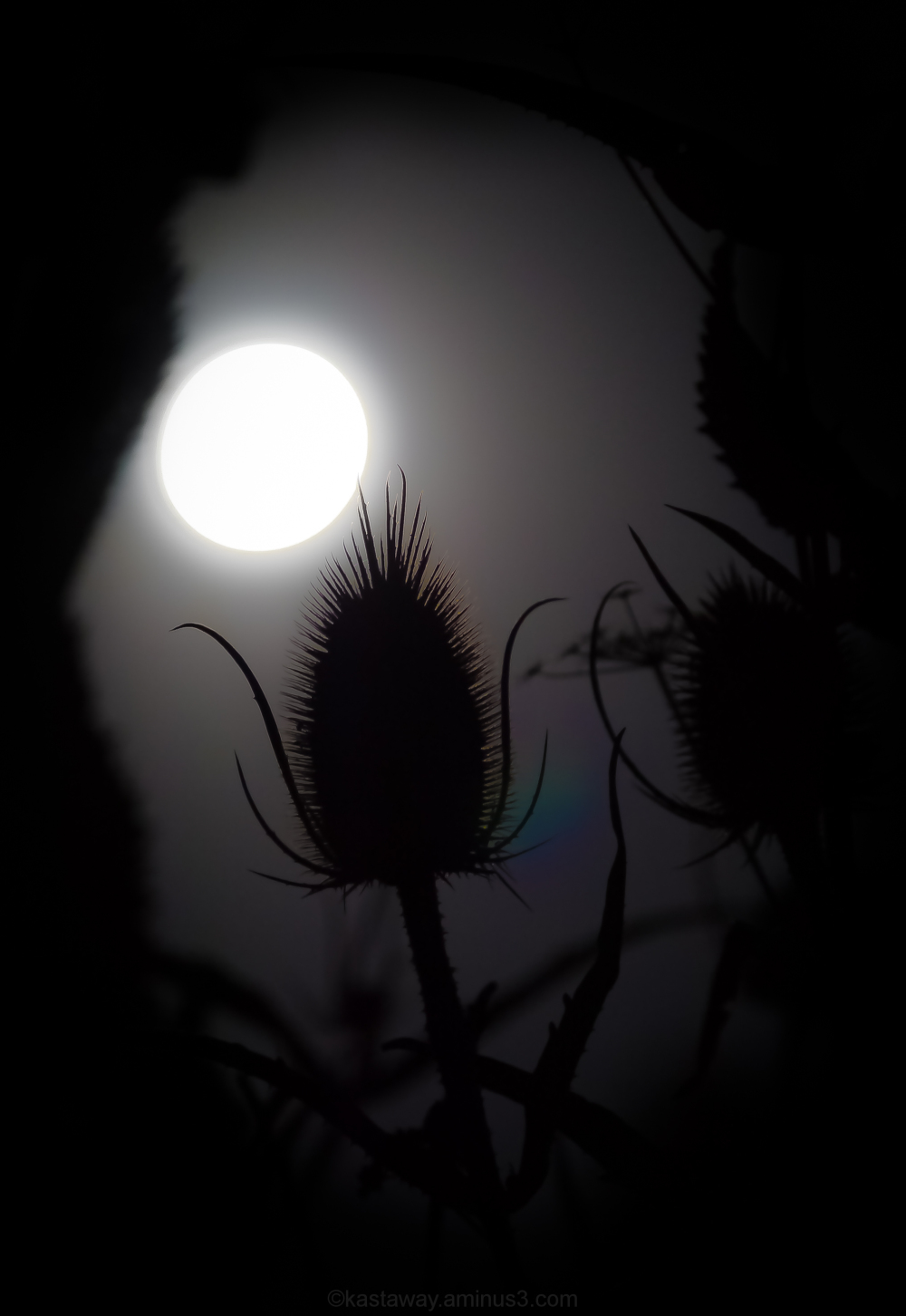 Super moon 2-4
