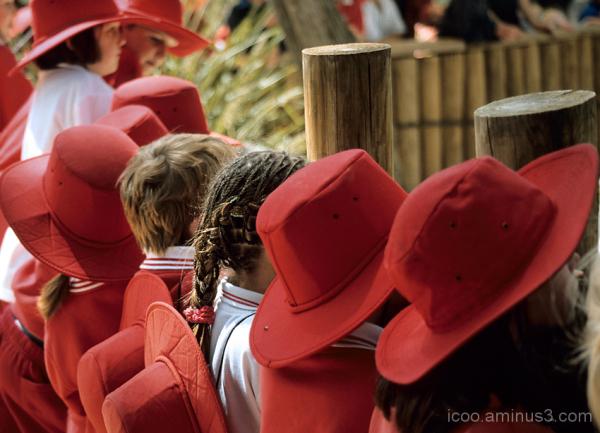 school red hats