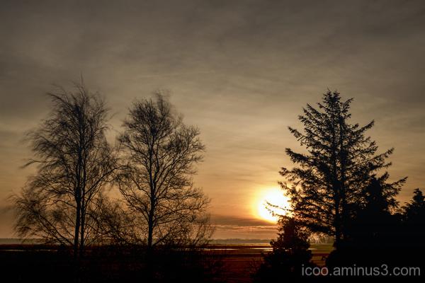 landscape rural sunrise trees