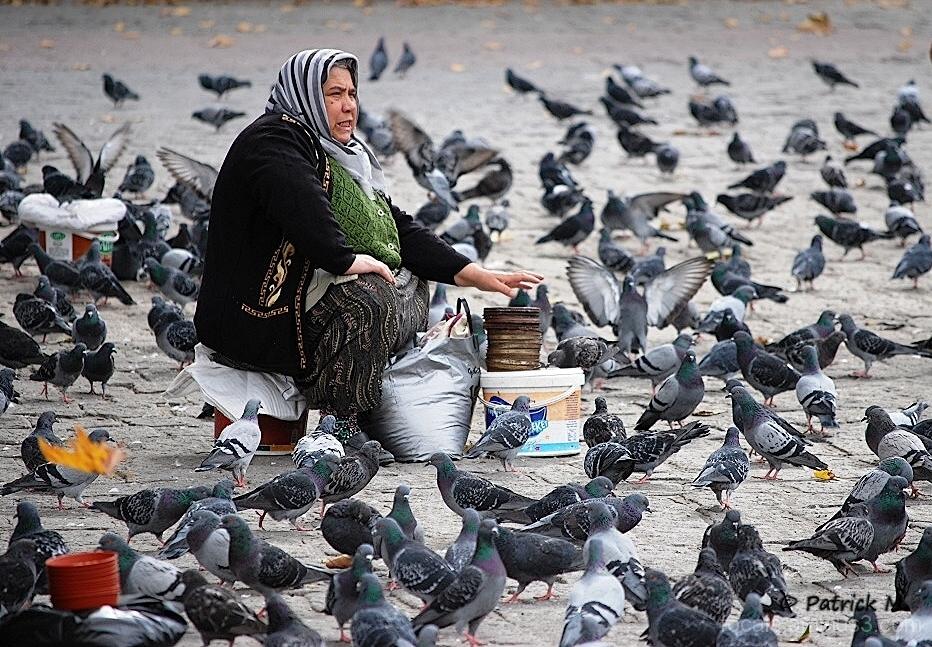 Femme aux pigeons