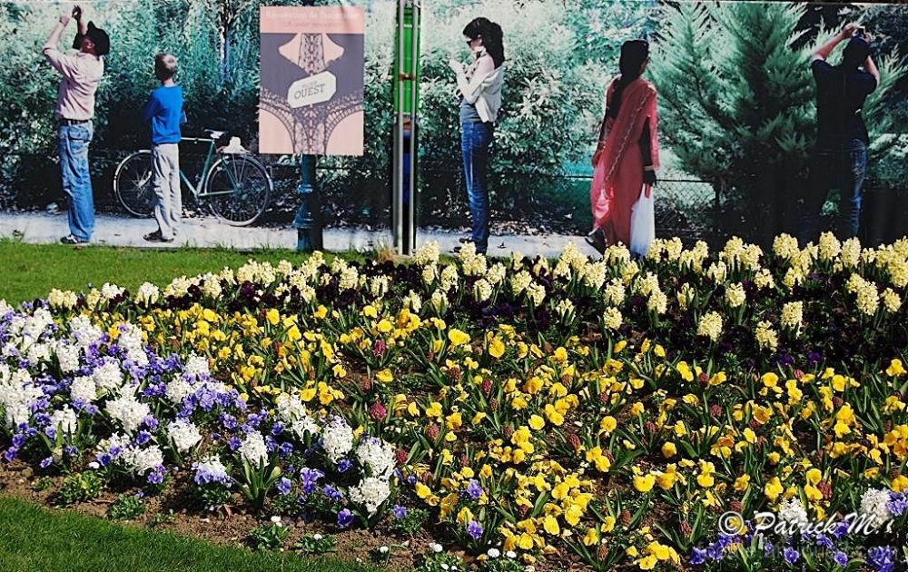 Jardin à Paris