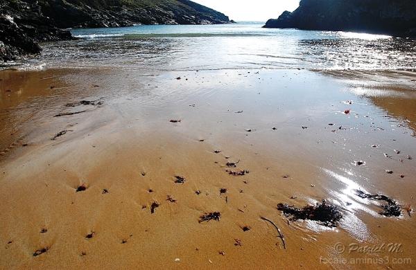Sur la plage abandonnée .......