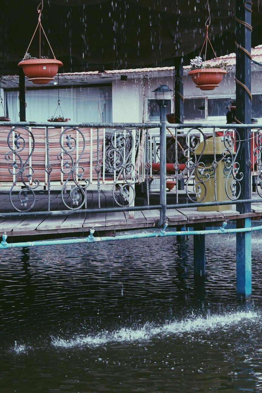 مِشِد | مشهد