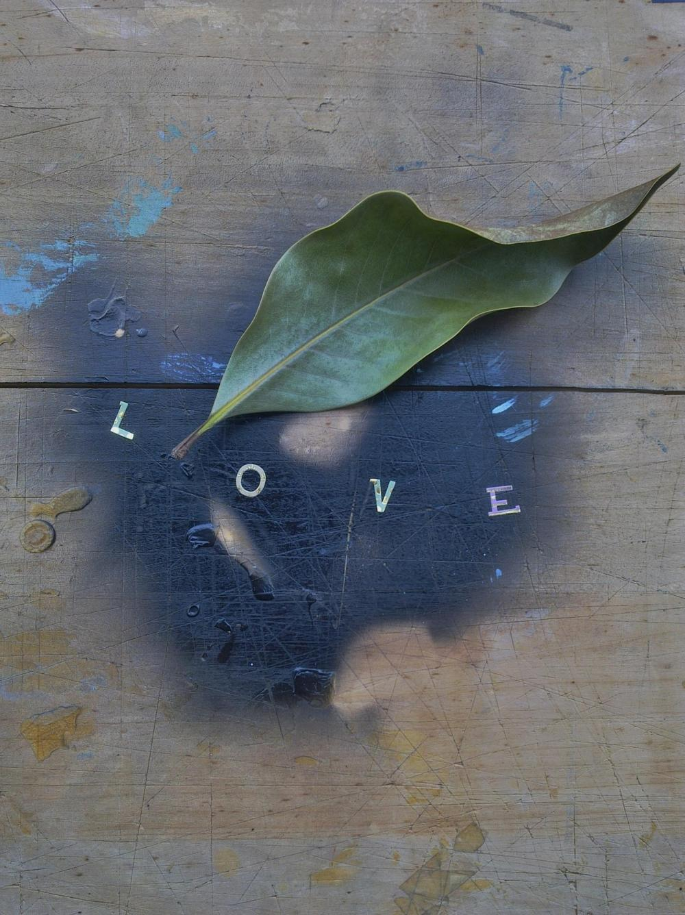 Color photograph of the word Love...