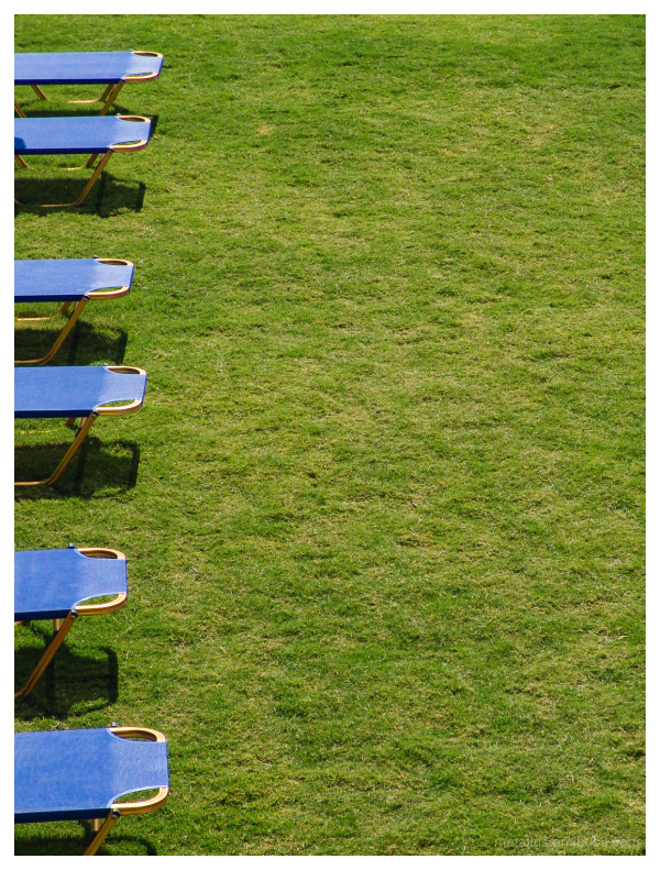 Sea chairs on a green field