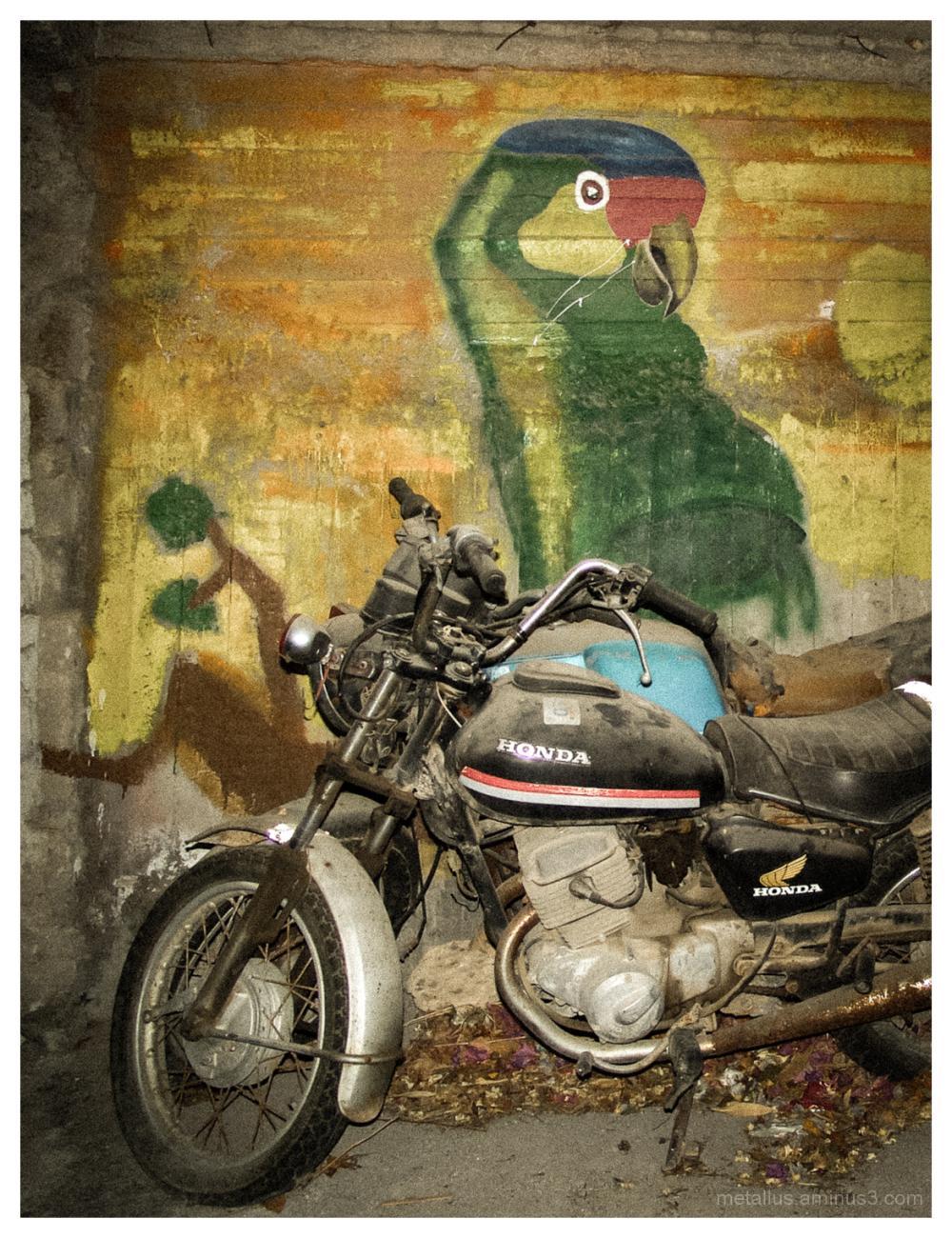 Motorbike and graffiti at Koroni, Greece