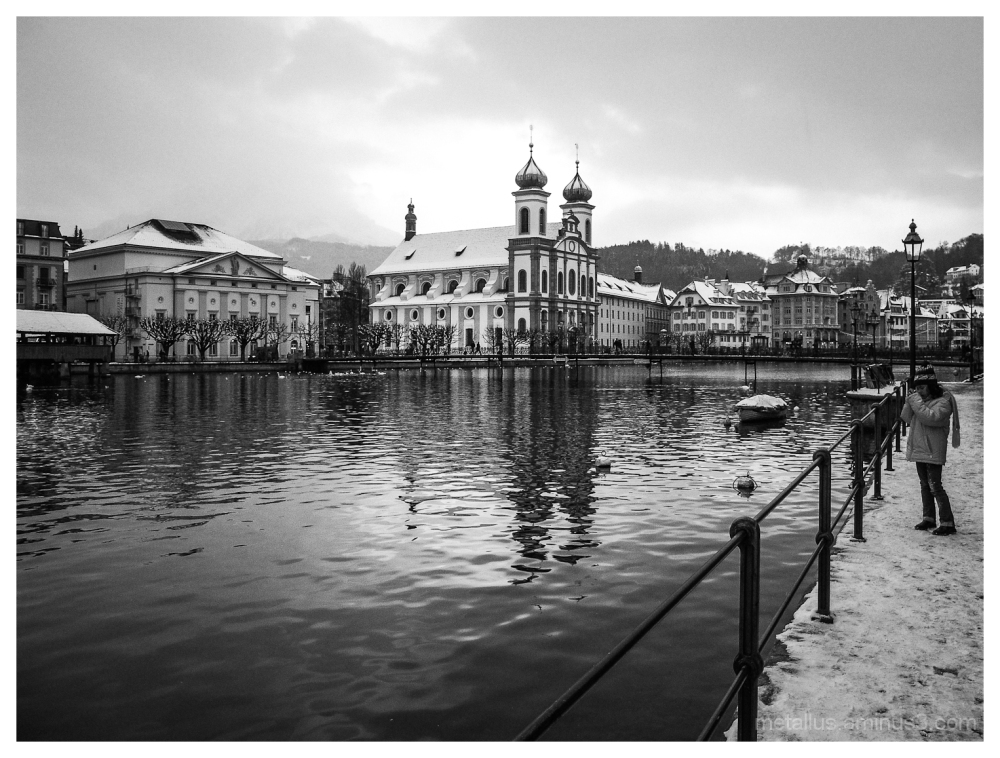 Swans and ducks at Lucerne, Switzerland