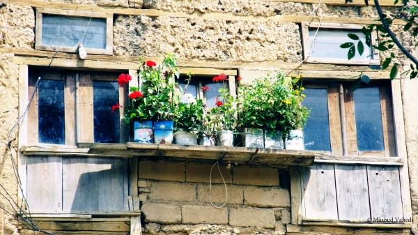 پنجره بشوم ، گلدان من باشی