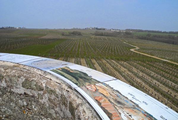 La Loire: Vignoble
