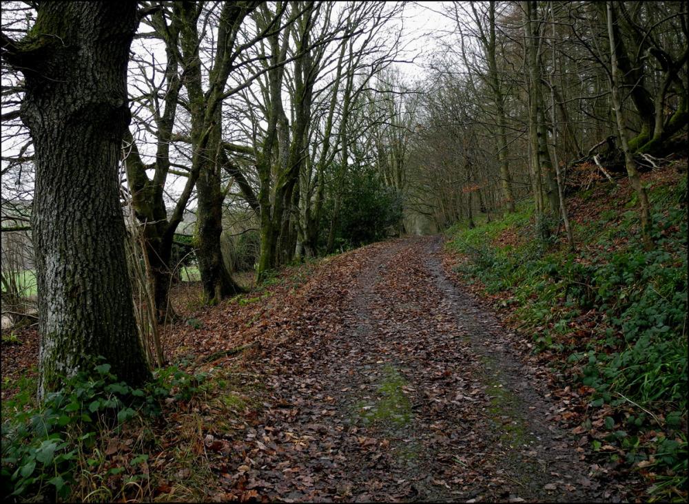 Offa's Dyke at Burfa Camp